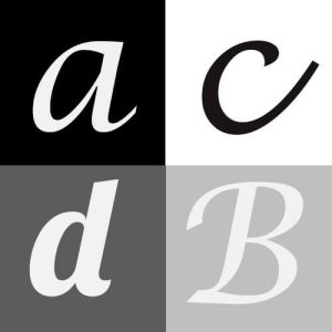 Fonts software